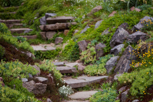 lafarges-raw-materials-for-landscaping-in-vancouver-bc-4
