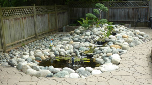 residential-landscape-design-with-stones-in-vancouver-bc-1