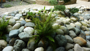 residential-landscape-design-with-stones-in-vancouver-bc-3