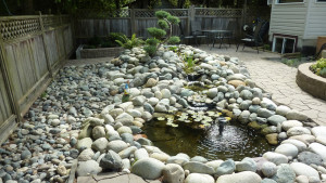 residential-landscape-design-with-stones-in-vancouver-bc-4