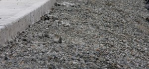 Base material primarily used in driveways.